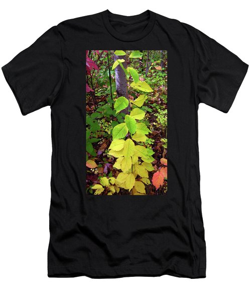 Autumn Leaves II Men's T-Shirt (Athletic Fit)