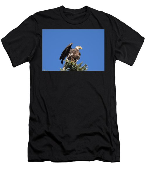 Men's T-Shirt (Athletic Fit) featuring the photograph Bald  Eagle Juvenile Ready To Fly by Margarethe Binkley