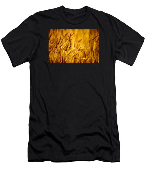 Bearded Barley Men's T-Shirt (Athletic Fit)