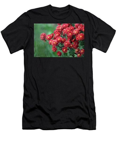 Beautiful Red Mums Men's T-Shirt (Athletic Fit)