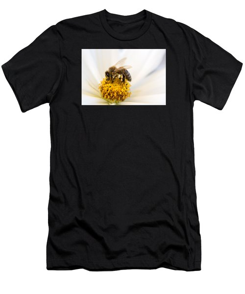 Bee Time Men's T-Shirt (Athletic Fit)