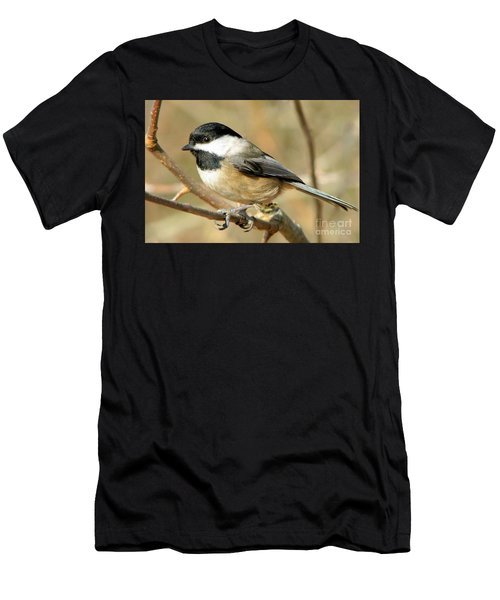 Black-capped Chickadee Men's T-Shirt (Athletic Fit)