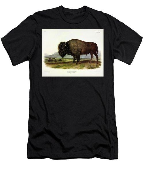 Bos Americanus, American Bison, Or Buffalo Men's T-Shirt (Athletic Fit)