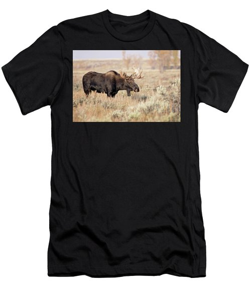 Bull Moose  Men's T-Shirt (Athletic Fit)
