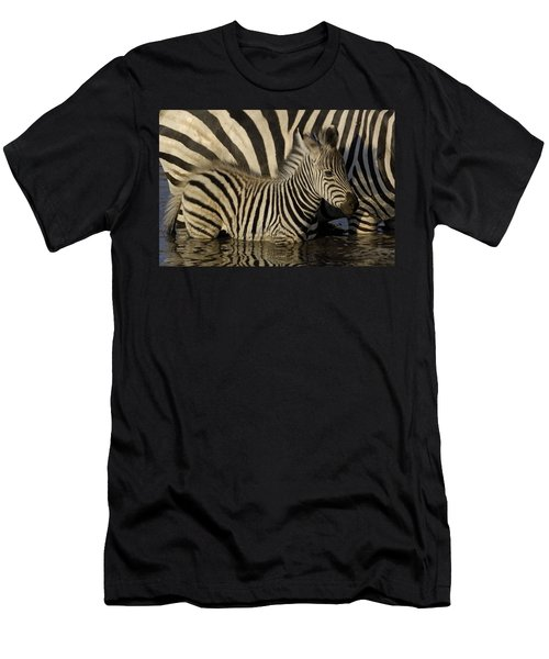 Burchells Zebra Equus Burchellii Foal Men's T-Shirt (Athletic Fit)
