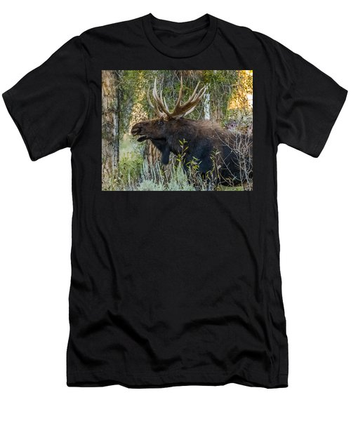 Calling All His Girls Men's T-Shirt (Slim Fit) by Yeates Photography