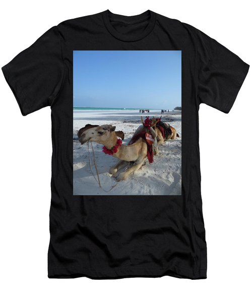 Camel On Beach Kenya Wedding Men's T-Shirt (Athletic Fit)
