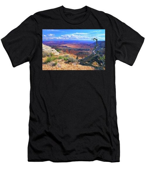 Canyonlands Men's T-Shirt (Athletic Fit)