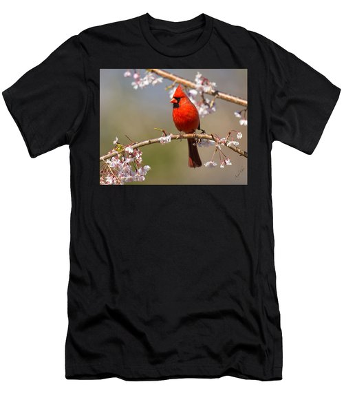 Men's T-Shirt (Athletic Fit) featuring the photograph Cardinal In Cherry by Angel Cher
