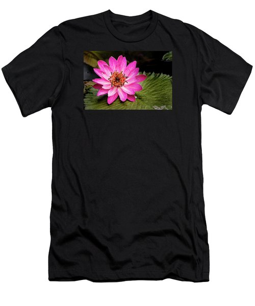 Carroll Creek Water Lily Men's T-Shirt (Athletic Fit)