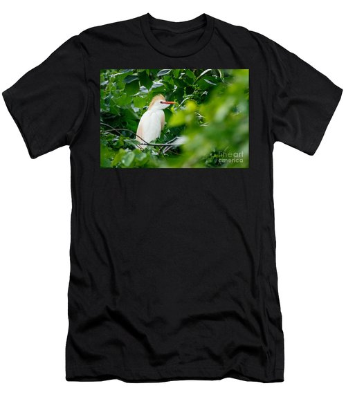 Cattle Egret At Rest Men's T-Shirt (Slim Fit)