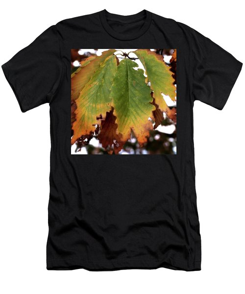 Changing Leaves Men's T-Shirt (Athletic Fit)
