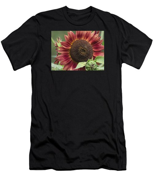 Chianti 2015 Men's T-Shirt (Athletic Fit)