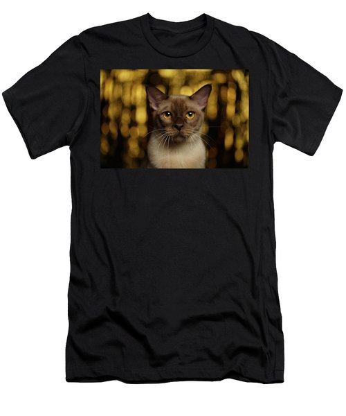 Closeup Portrait Burmese Cat On Happy New Year Background Men's T-Shirt (Athletic Fit)