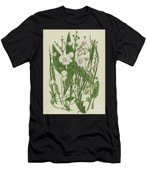 Common Star Fruit, Greater Water Plantain And Other Plants Men's T-Shirt (Athletic Fit)