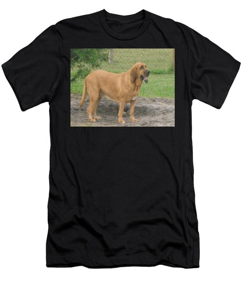 Cujo At The Park Men's T-Shirt (Athletic Fit)