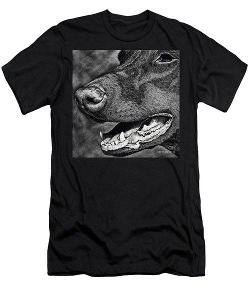 Doberman Face Men's T-Shirt (Slim Fit) by Terri Mills