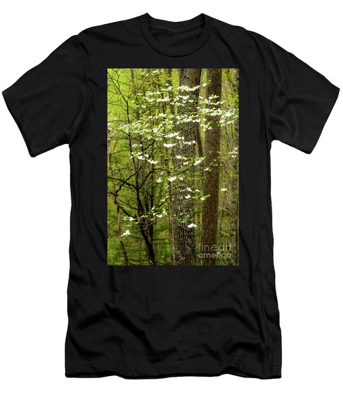 Dogwood Blooming In Forest Men's T-Shirt (Athletic Fit)