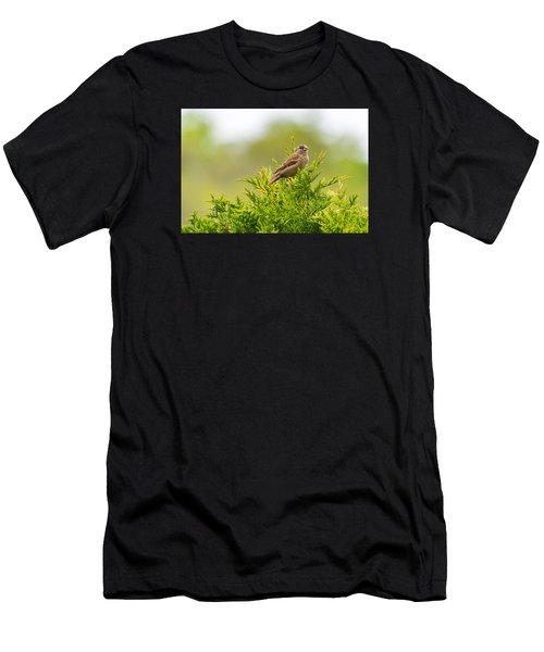 Dunnok Men's T-Shirt (Athletic Fit)