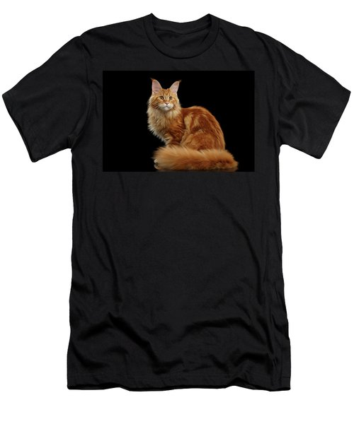Men's T-Shirt (Athletic Fit) featuring the photograph Ginger Maine Coon Cat Isolated On Black Background by Sergey Taran