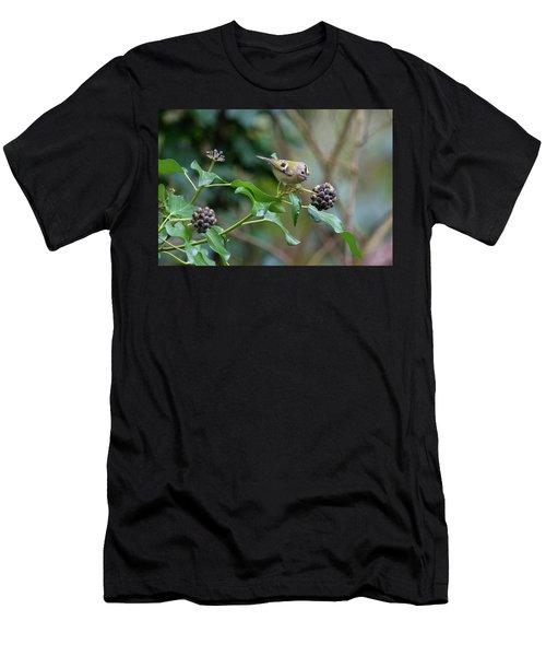 Goldcrest Men's T-Shirt (Athletic Fit)