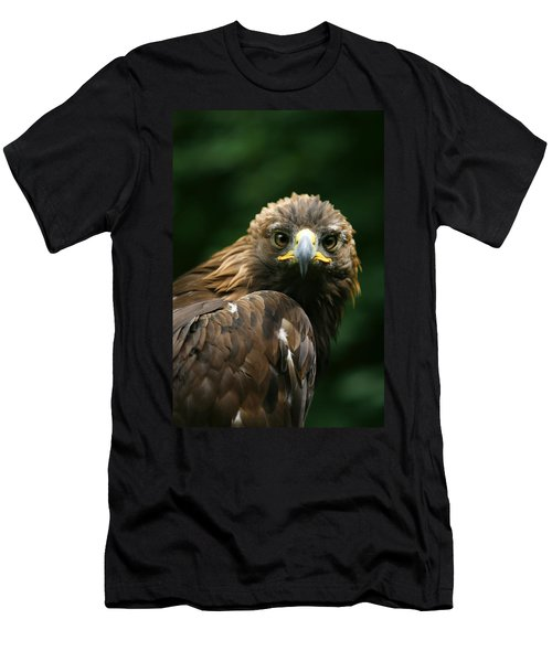 Golden Eagles Face Aquila Chrysaetos Men's T-Shirt (Athletic Fit)