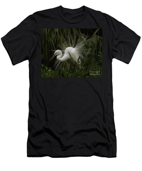 Great White Egret Displaying Men's T-Shirt (Athletic Fit)