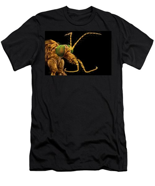 Green Eyed Crane Fly Men's T-Shirt (Athletic Fit)