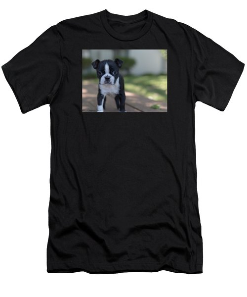 Harley As A Puppy Men's T-Shirt (Athletic Fit)
