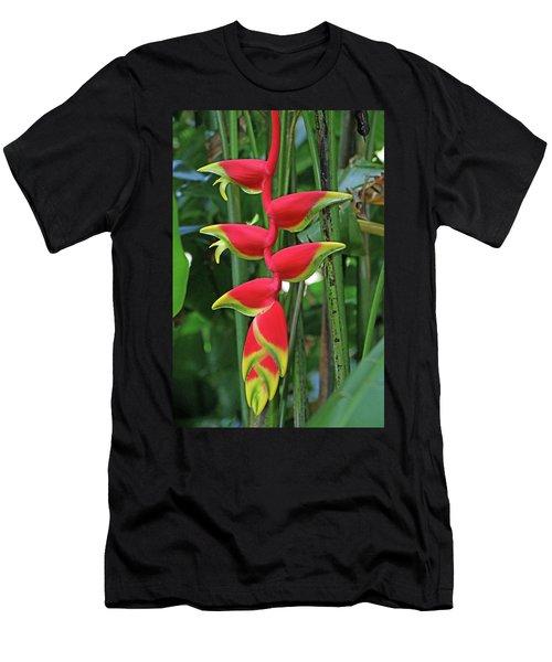 Hawaii Flora Men's T-Shirt (Athletic Fit)