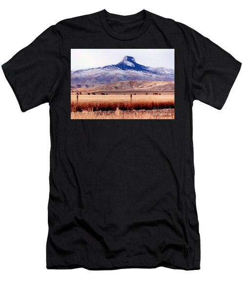 Hart Mountain - Cody,  Wyoming Men's T-Shirt (Athletic Fit)