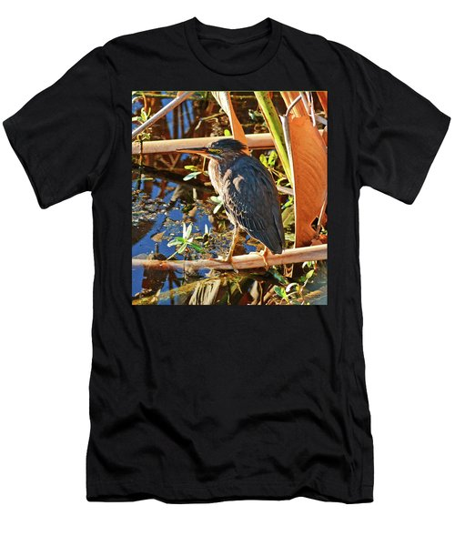 Hiding In Plain Sight Men's T-Shirt (Athletic Fit)