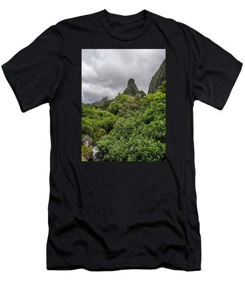 Iao Valley Men's T-Shirt (Athletic Fit)