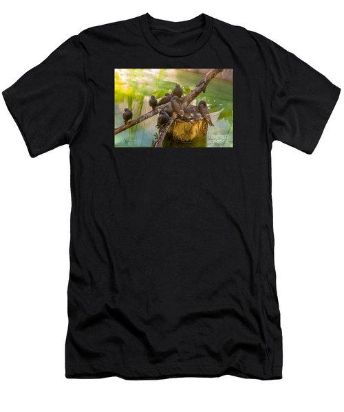 Inca Terns Men's T-Shirt (Athletic Fit)
