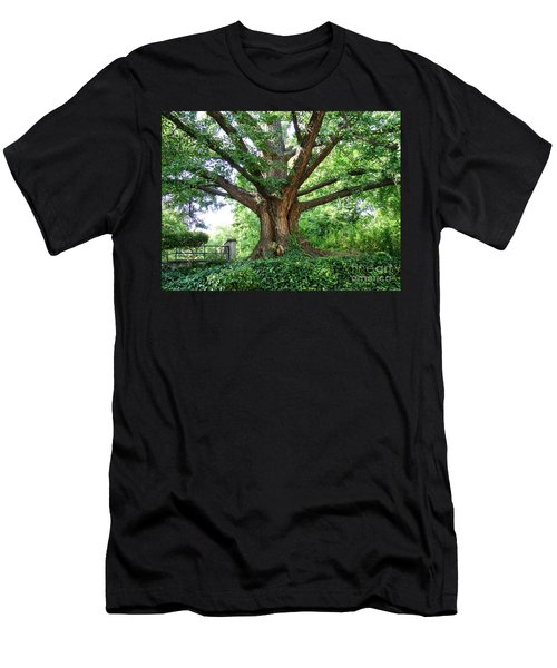 Inwood Ginkgo  Men's T-Shirt (Athletic Fit)