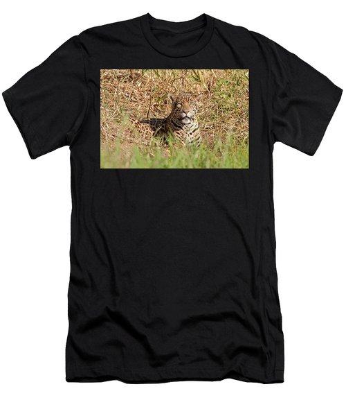 Jaguar Watching Men's T-Shirt (Athletic Fit)