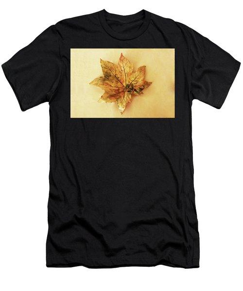 Leaf Plate1 Men's T-Shirt (Athletic Fit)