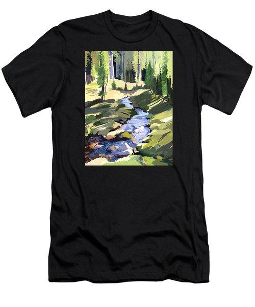 Lena Peak Stream Men's T-Shirt (Athletic Fit)