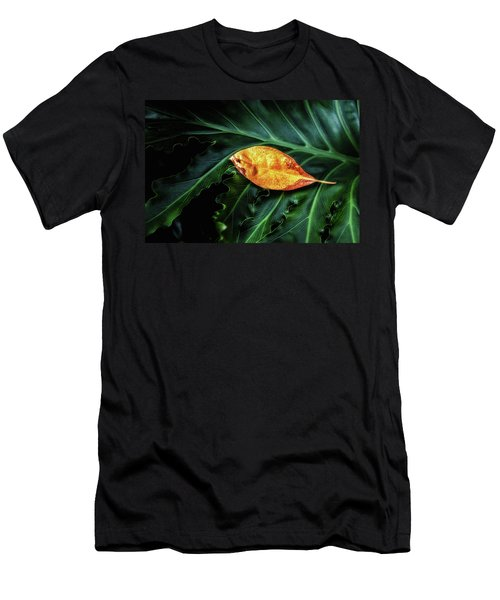 Life Cycle Still Life Men's T-Shirt (Athletic Fit)