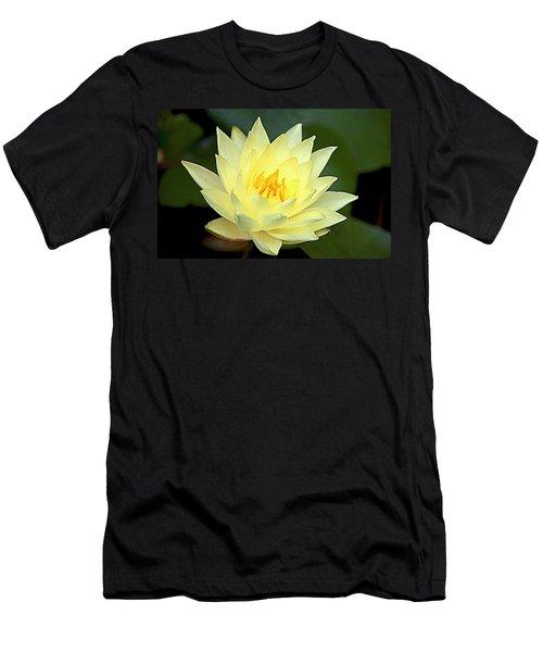 Lily Men's T-Shirt (Athletic Fit)
