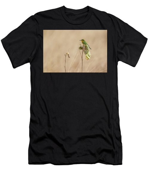 Little Bee-eater Men's T-Shirt (Athletic Fit)