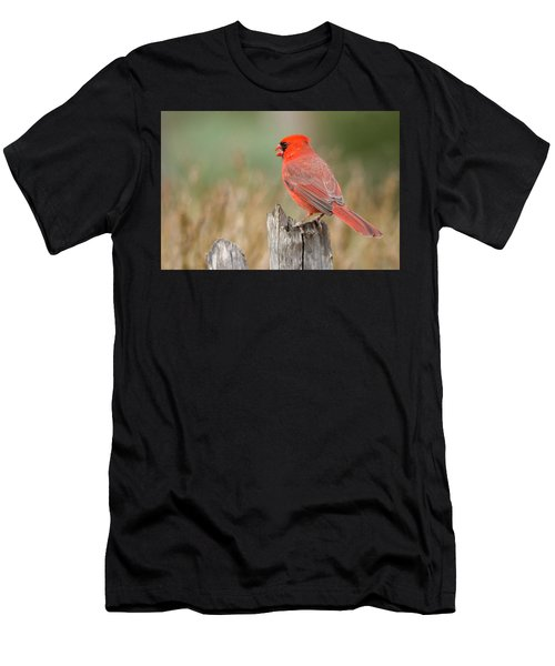 Men's T-Shirt (Athletic Fit) featuring the photograph Male Cardinal by David Waldrop