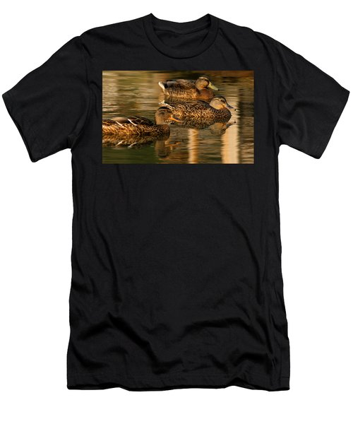 Mallards Swimming In The Water At Magic Hour Men's T-Shirt (Athletic Fit)
