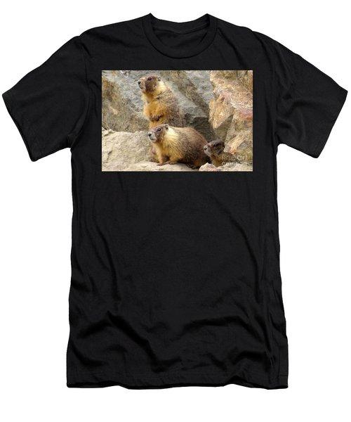 Marmot Trio Men's T-Shirt (Athletic Fit)