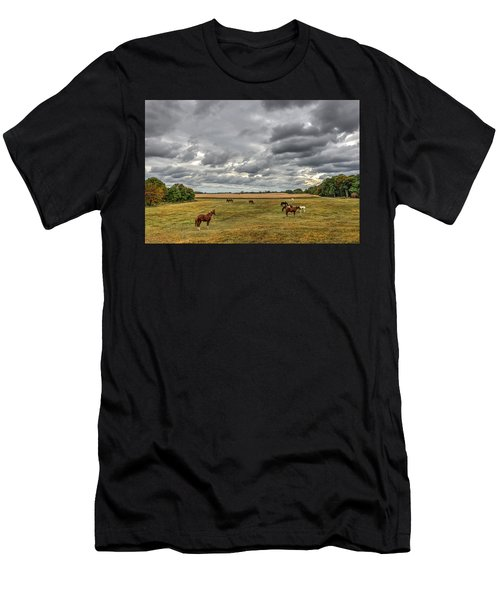 Maryland Pastures Men's T-Shirt (Athletic Fit)
