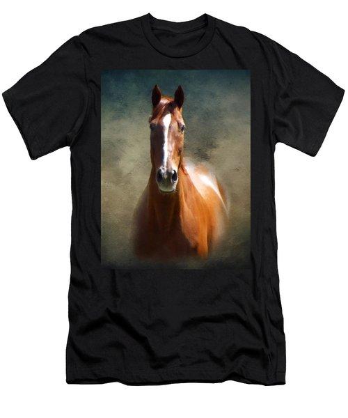 Misty In The Moonlight P D P Men's T-Shirt (Athletic Fit)