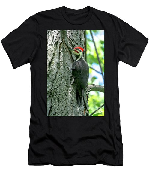 Mr. Pileated Woodpecker Men's T-Shirt (Athletic Fit)