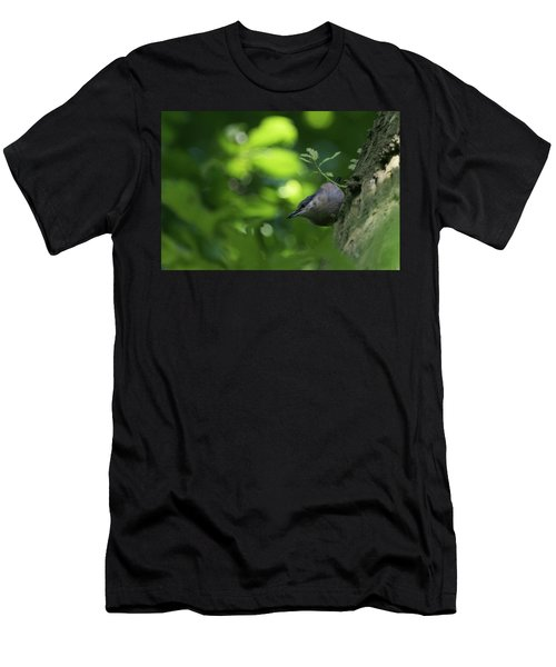Nuthatch Men's T-Shirt (Athletic Fit)
