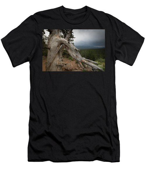 Old Tree On The Mountain Men's T-Shirt (Athletic Fit)