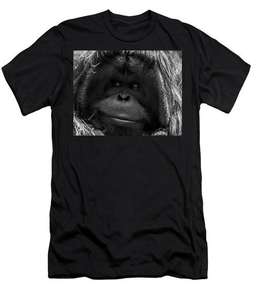 Orangutan Men's T-Shirt (Slim Fit) by Martin Newman